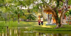 Temple Bale Garden