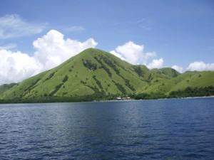 フローレスの島