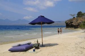 Menjangan Activities at menjangan island