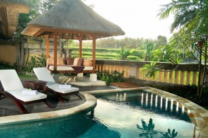 Private pool -Rice fieldpoolvilla